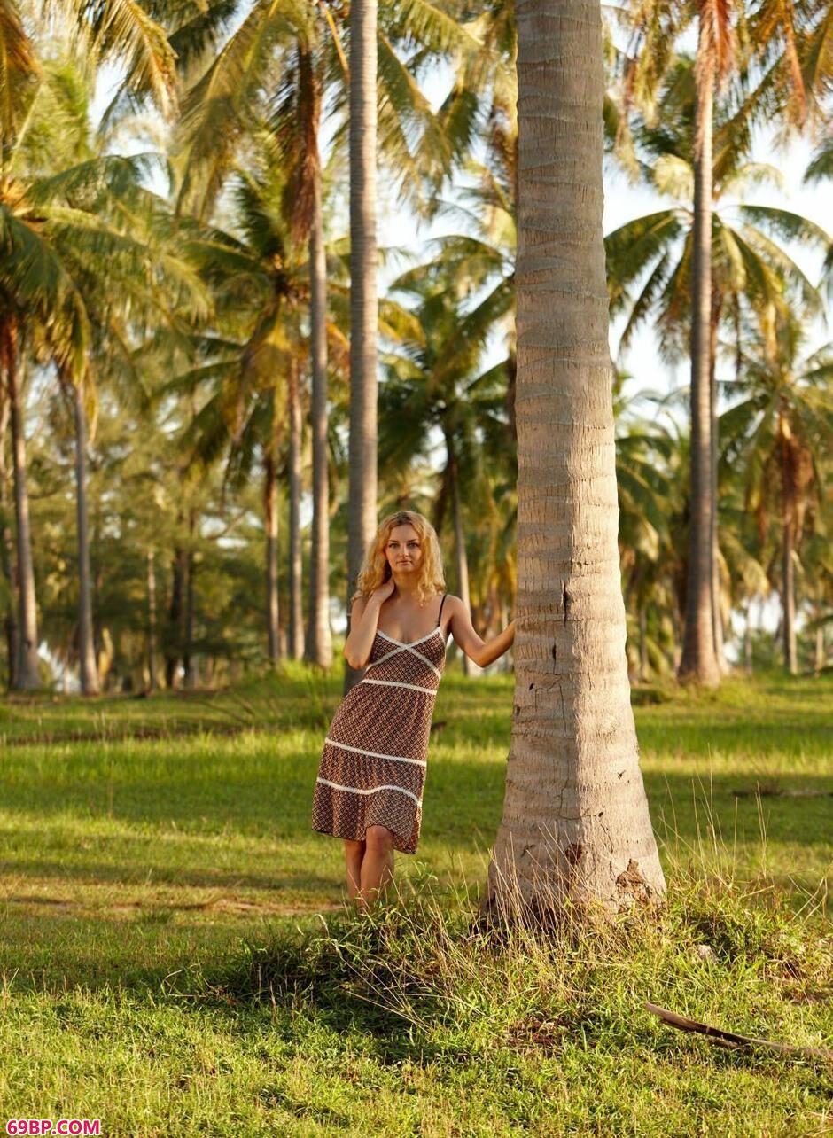 裸模Helen在椰子树林里的诱惑美体1